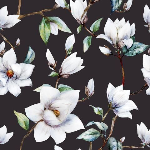 Removable Wallpaper From Wallsneedlove Lifestyle Magnolia Wallpaper Floral Wallpaper Feature Wallpaper