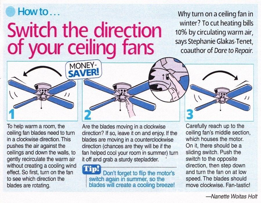 Which Direction Should A Ceiling Fan Turn In Winter Time Cak11