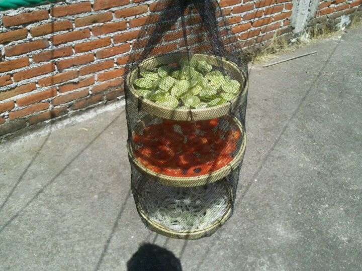 Solar dehydrator. I can use quilting hoops.