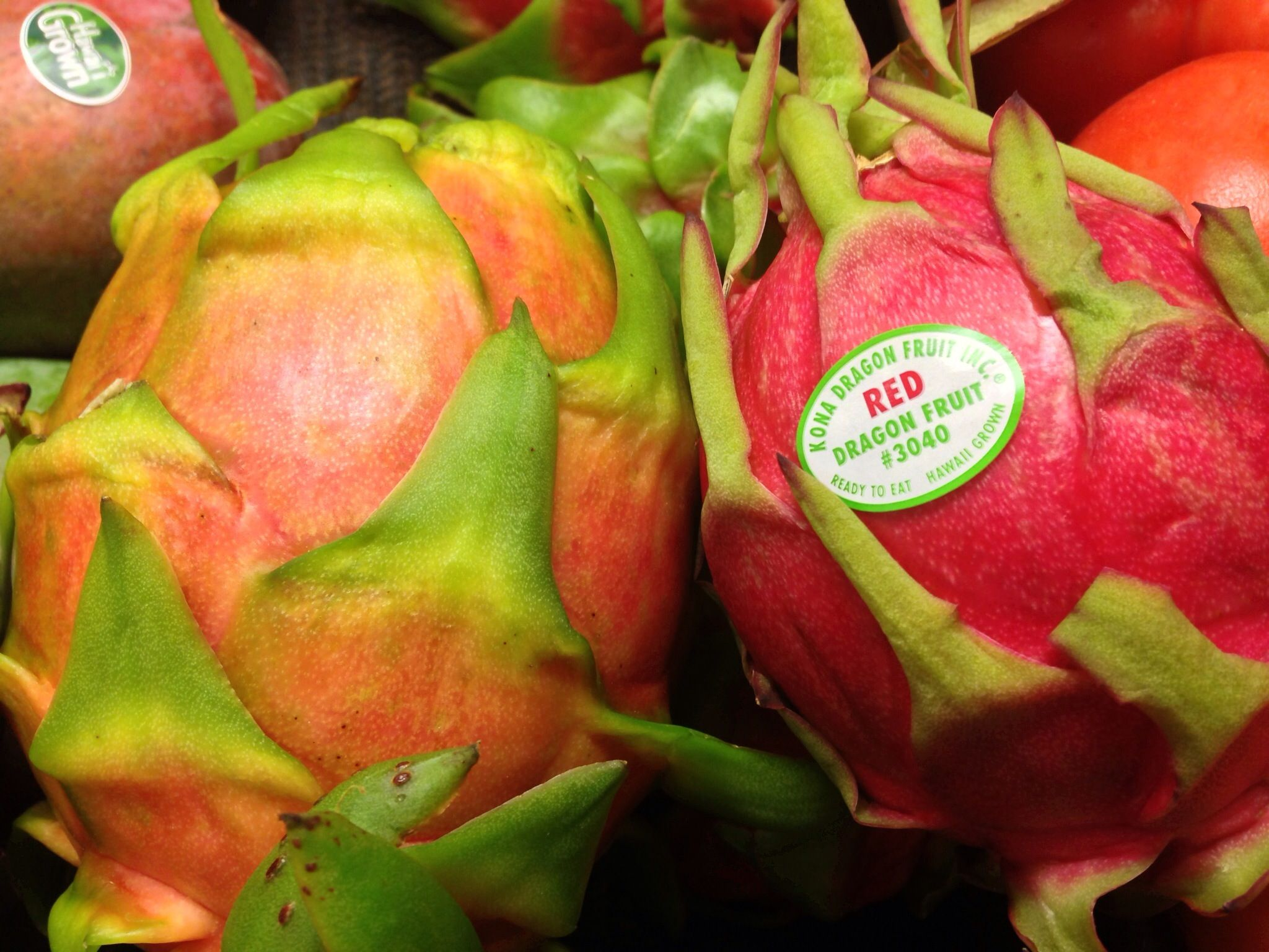 Dragon fruit Dragon fruit, Stuffed peppers, Fruit