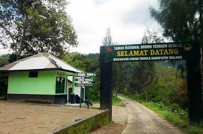 pergipedia menjelajah obyek wisata taman nasional bromo tengger semeru bagi anda para pecint