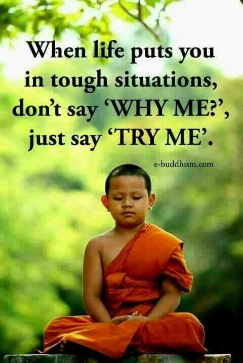 Pin by shekhar kharadi on Buddha Quotes | Buddhist quotes, Buddhism quote, Buddism quotes