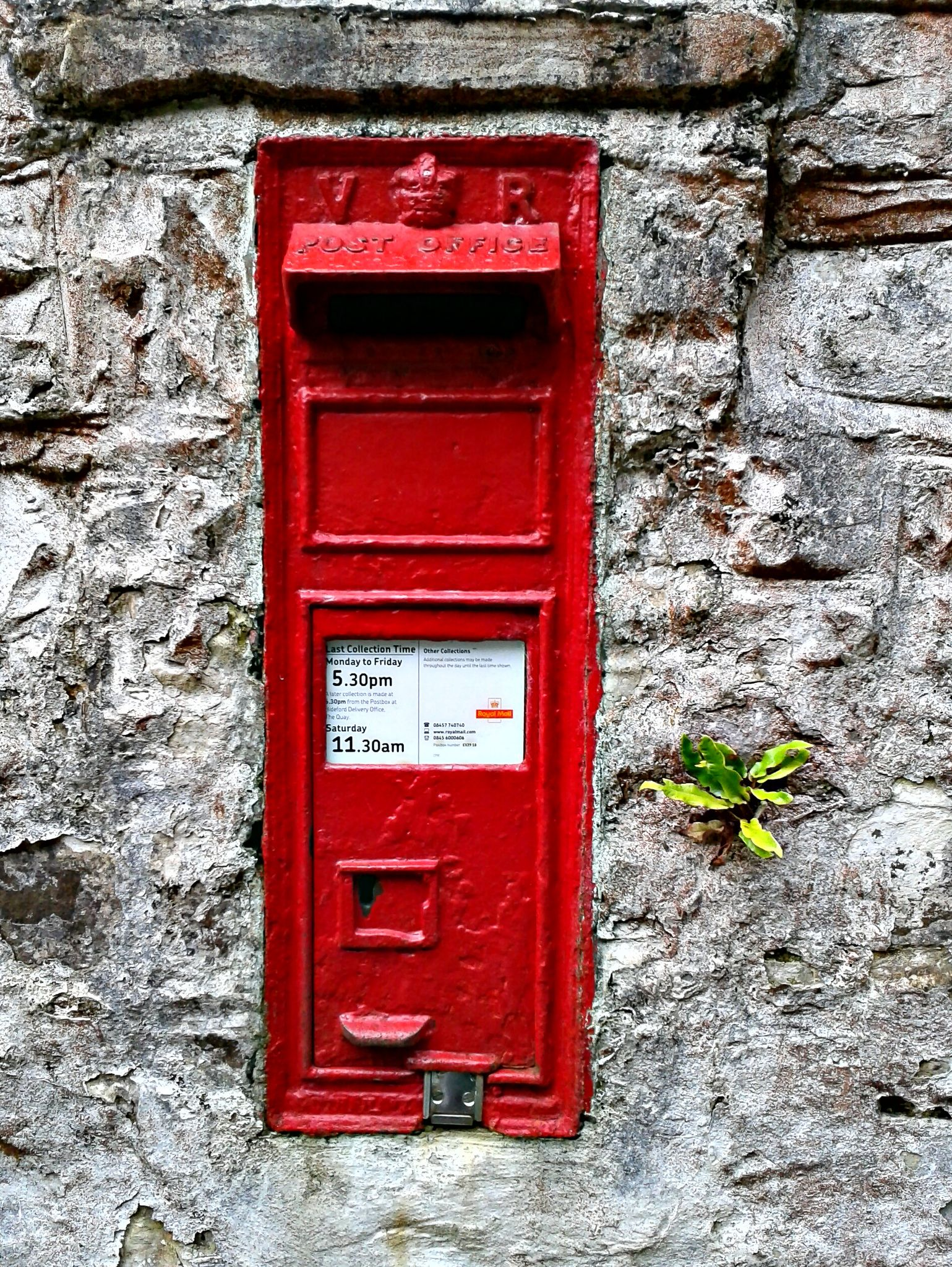 North Devon Postbox Fern In Wall Post Box Antique Mailbox Royal Mail Post Office