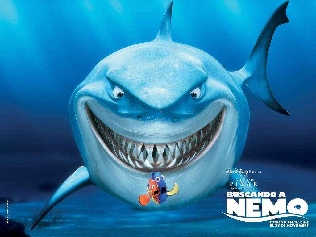 Buscando A Nemo Finding Nemo Finding Nemo Full Movie Nemo Bruce