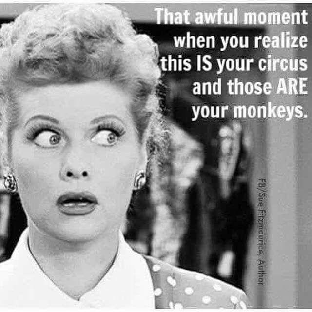 More of the Funniest Teaching Memes Around!   Teach Starter Blog