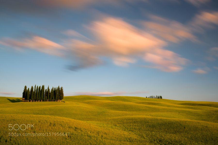 Springtime in Tuscany by blazblue78