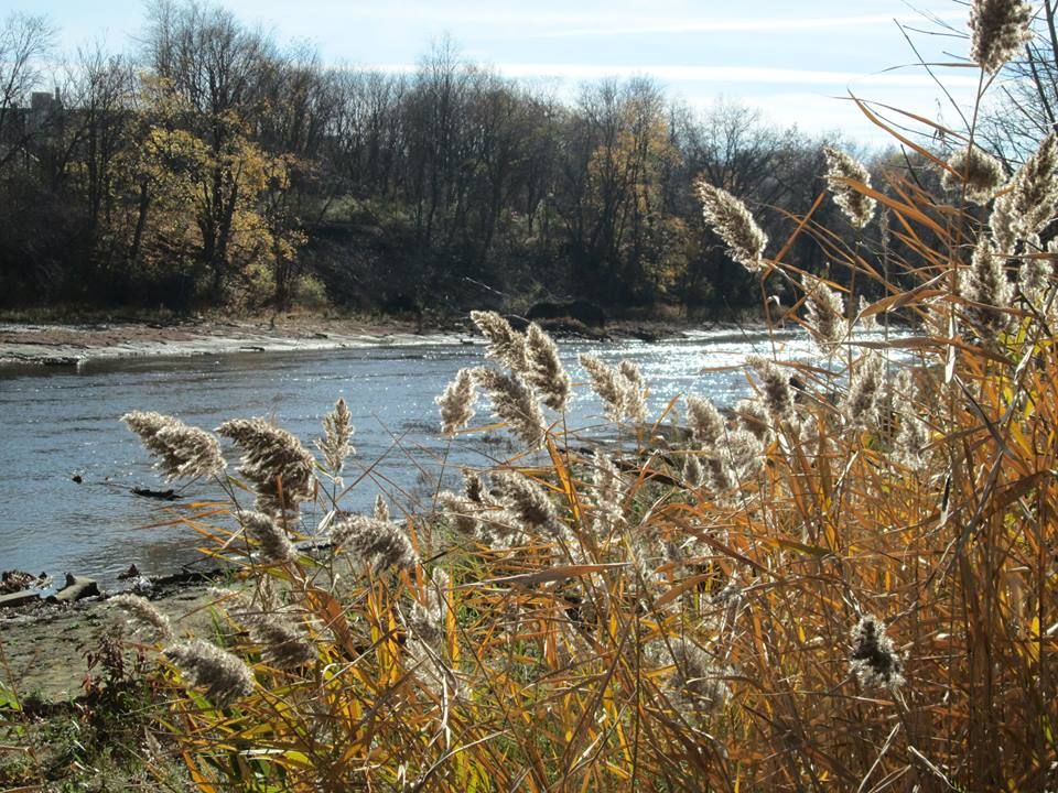 Beautiful day in Cuyahoga Falls, OH on Nov. 10th, 2014 caught by Dawn Boss Tallent.