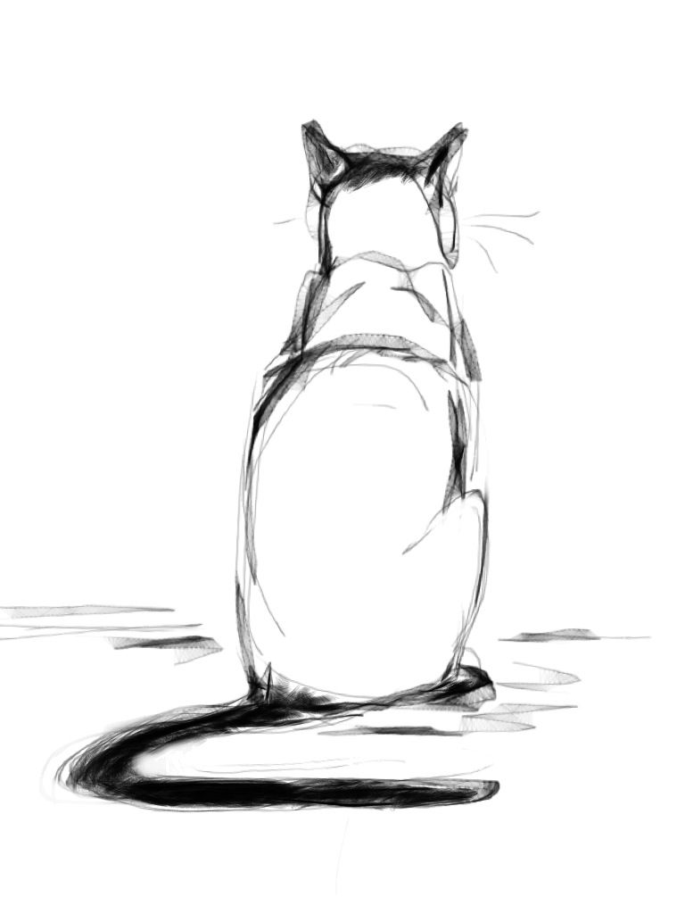 Cat: drew from memory on a bus. #ASKetch charcoal
