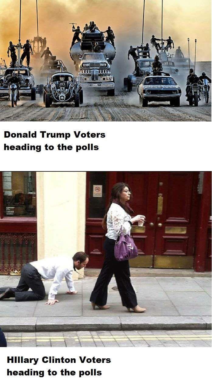 voterscontrast