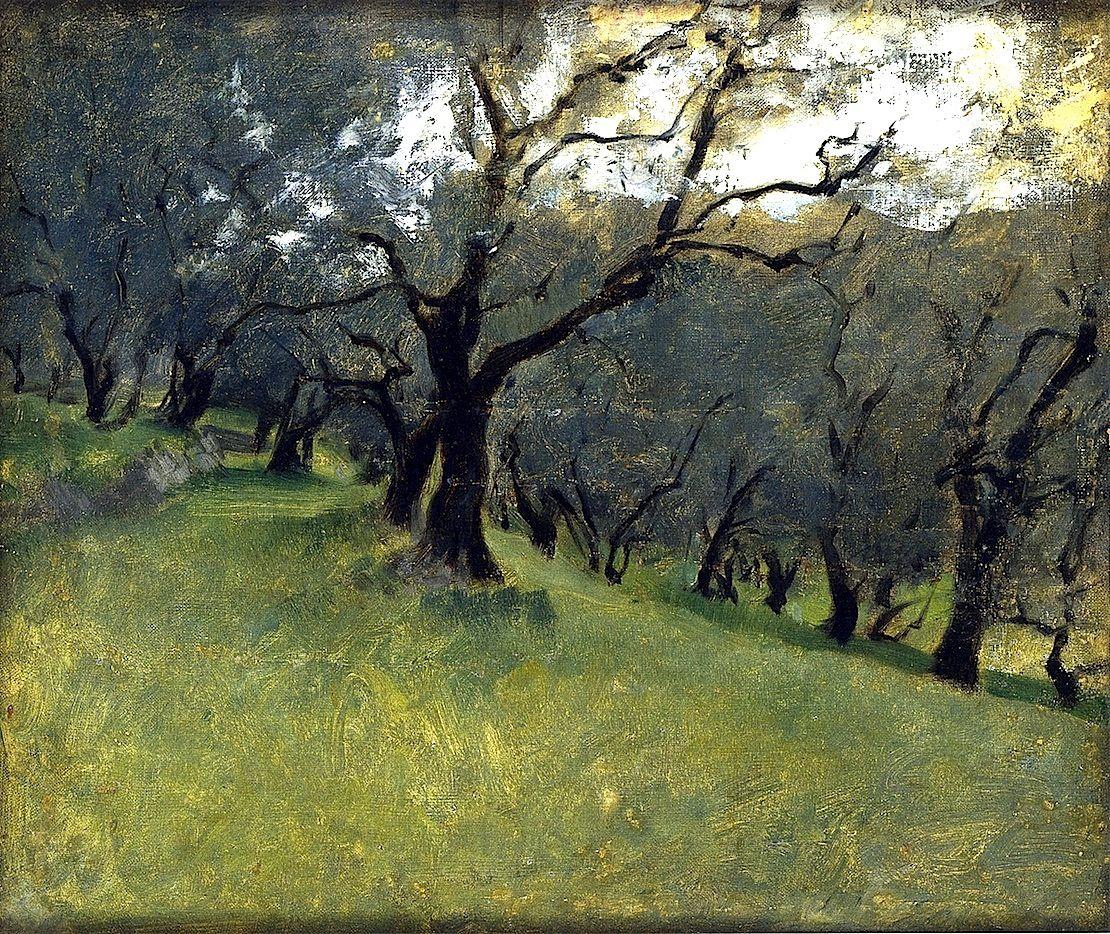 Bofransson Olive Trees John Singer Sargent Circa 1878 John Singer Sargent Landscape Paintings Singer Sargent