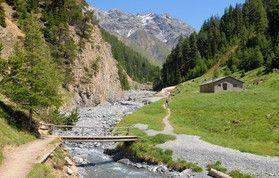 Wildnislandschaft des Schweizer Nationalparks