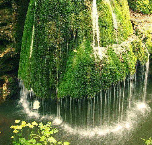 E là dove la natura decide di collocare i propri limiti, esplode lo spettacolo ♥  (A. Baricco)