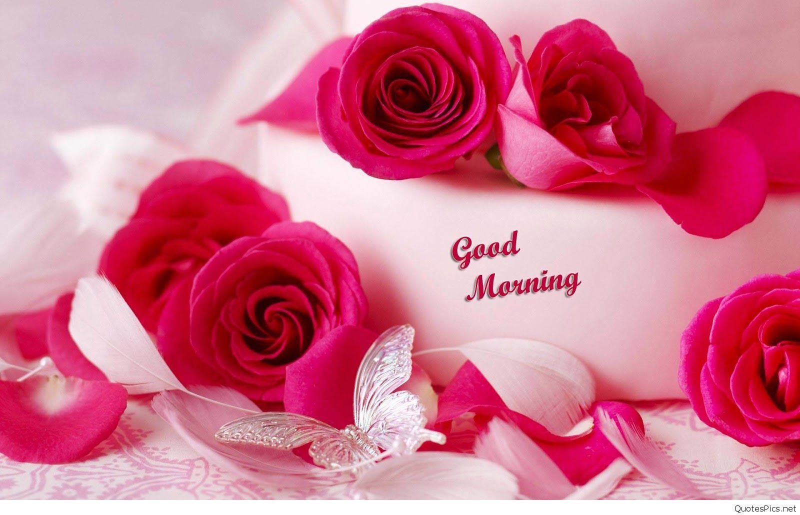 Beautiful good morning roses 2016 quotespics pinterest beautiful flowers pictures for desktop pictures of flowers izmirmasajfo Gallery