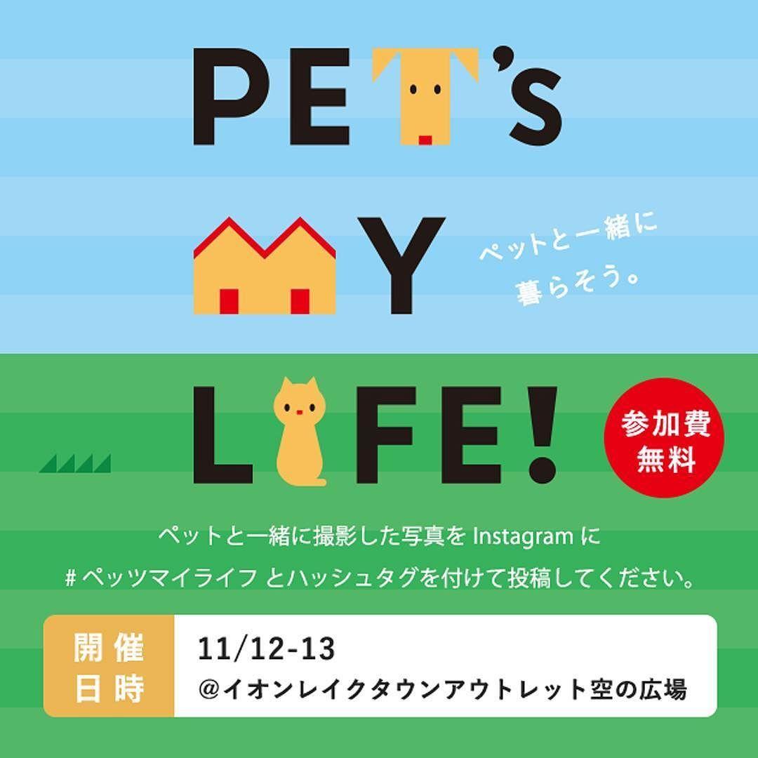 イベントのお知らせです 11月12日13日に埼玉の越谷レイクタウン駅にあるイオンモールでペットイベント開催します Instagramキャンペーンも実施中 ハッシュタグ ペッツマイライフで飼い主とペットの写真を投稿しよう Http Petsmy Life Instagram Instagram Posts Pets
