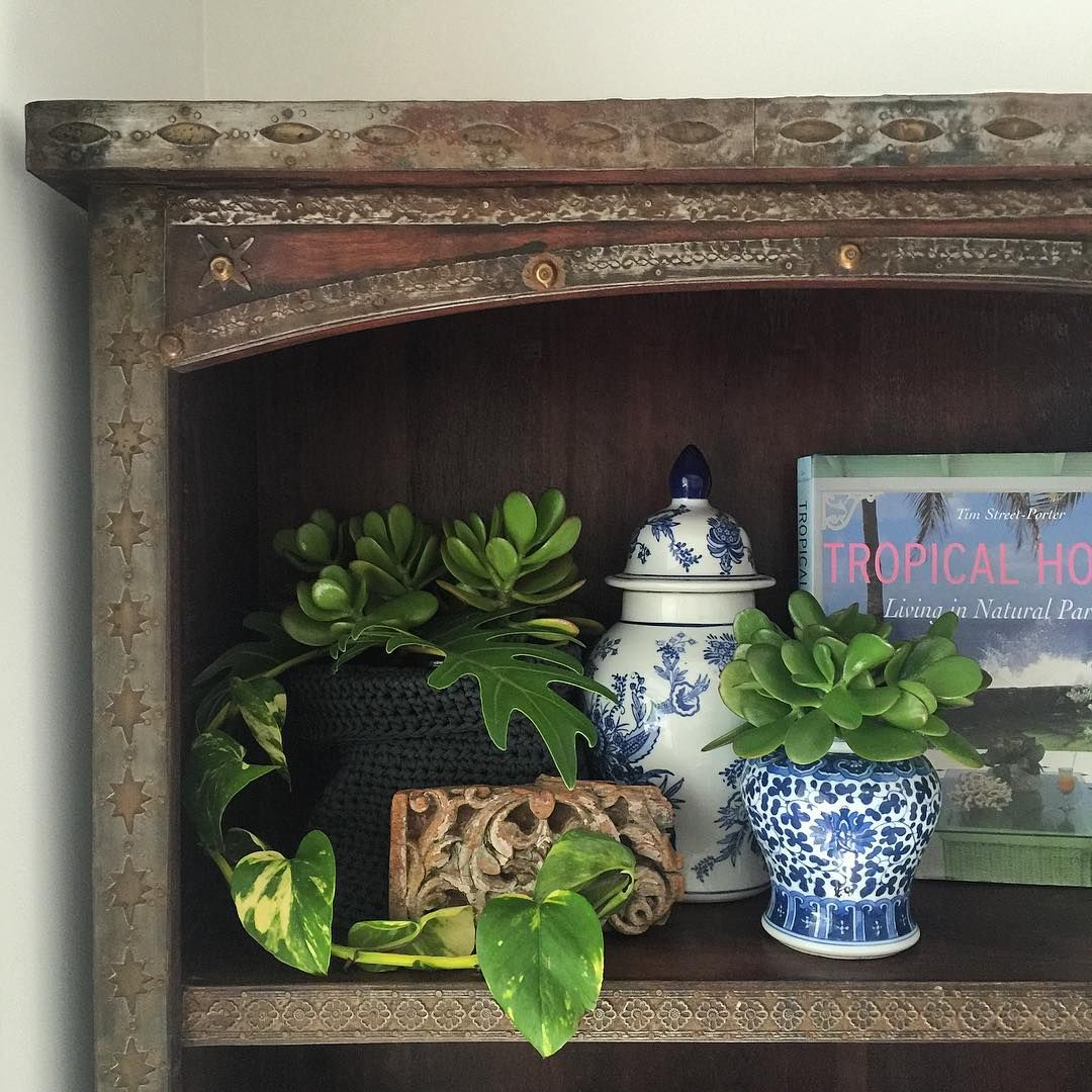 My love of beautiful inspiring books just keeps growing  #bookshelves #beautiful #myhome #mystyle #interior #styling #design #plants #hamptonstyle #india #timber #gingerjar #metaldetail #tropicalluxe #instahome #rustic #loungeroom #inspire #furniture #rusticcharm