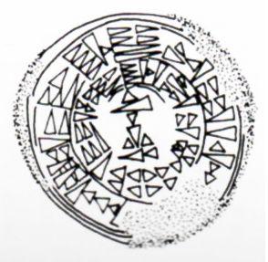 Drawing  of a cuneiform only seal, Boğazköy (Dinçol-Alpaslan) Erdinç Bakla archive)