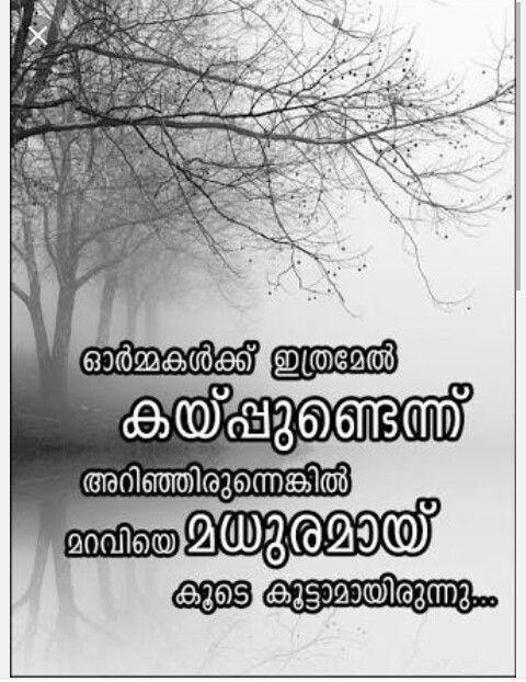 Aaa Quote Gorgeous Njammakk Pinne Maravi Oru Weakness Aaa  Malayalam Quotes . Design Ideas