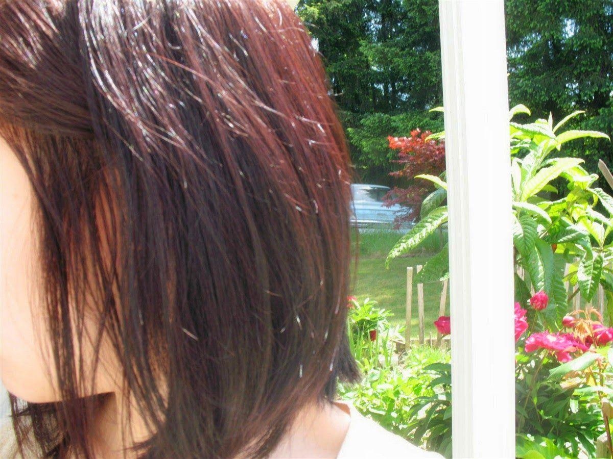 Jello Ca Revlon Colorsilk Hair Dye Review In Burgundy 48 Hair