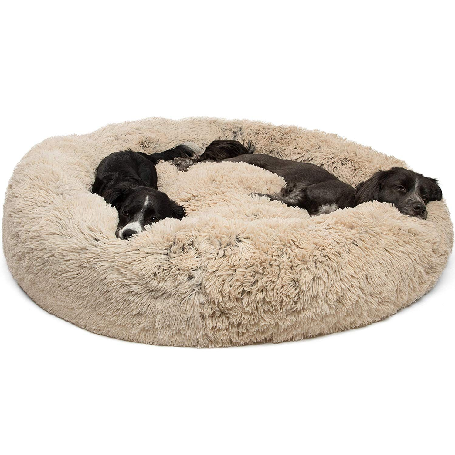 Best Dog Beds TopRated Dog Beds 2019 American Kennel