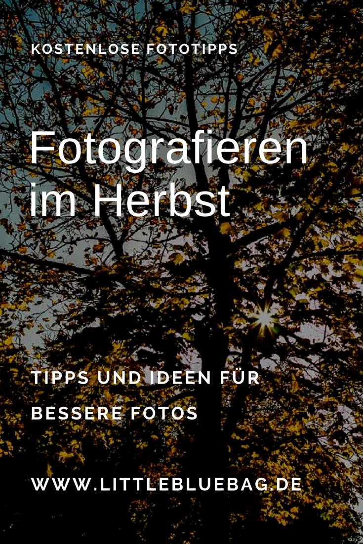 Fotografieren im Herbst | Fotografie | Photography, Photo ...