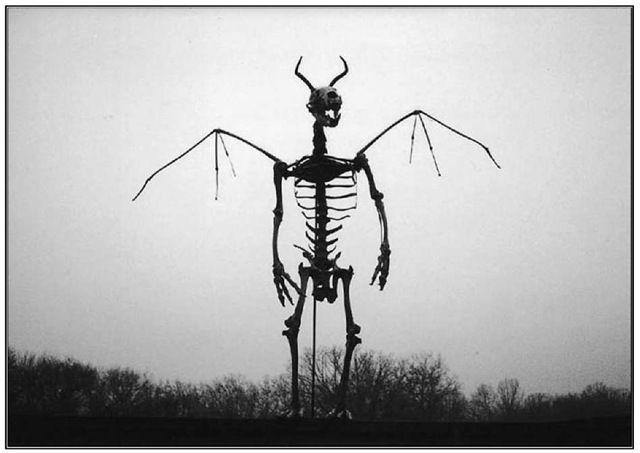 bill the butcher the devil s bones curiosities pinterest