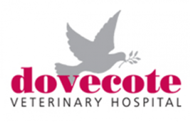 Read A Review Of Dovecote Veterinary Hospital In Castle Donington Vet Vets Dog Dogs Reviews Veterinary Hospital Veterinary Vets