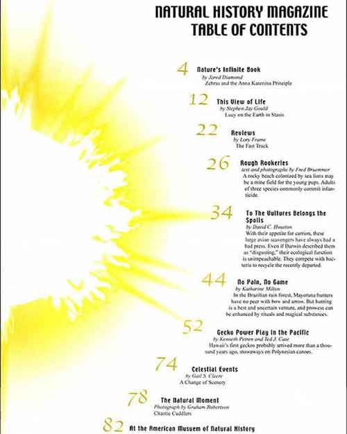30 Excellent Table of Contents Design Examples | Magazine ...