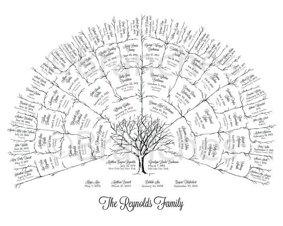 Ancestor & Genealogy Family Tree Fan Chart 5 Generations