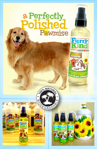 10 Ways To Reduce Dog Smells Dog Smells Dogs All About