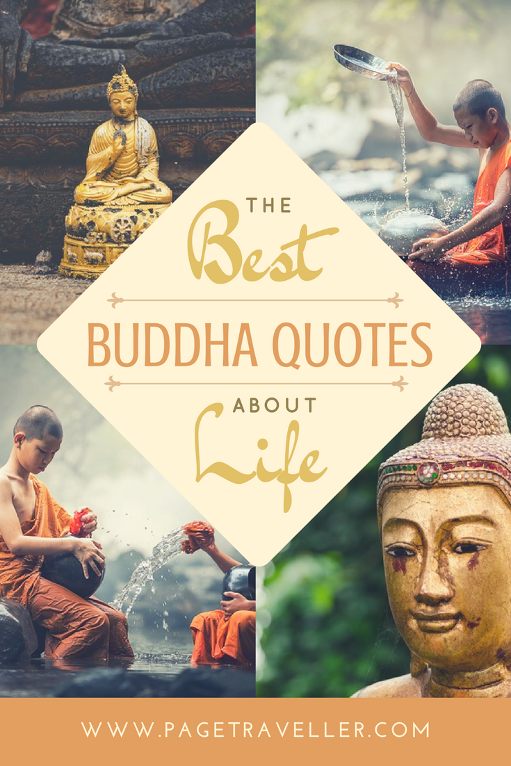 Buddha Quotes On Life The Best Buddha Quotes About Life  Buddha Quote Buddhist Monk