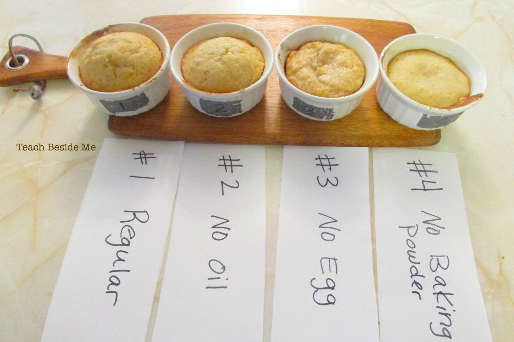 Kitchen Chemistry: Cake Experiment | Food science ...