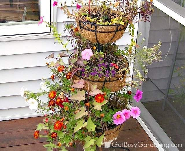 A Cheap Alternative To Coconut Liners For Hanging Baskets Planters Hanging Herb Gardens Basket Planters Hanging Baskets