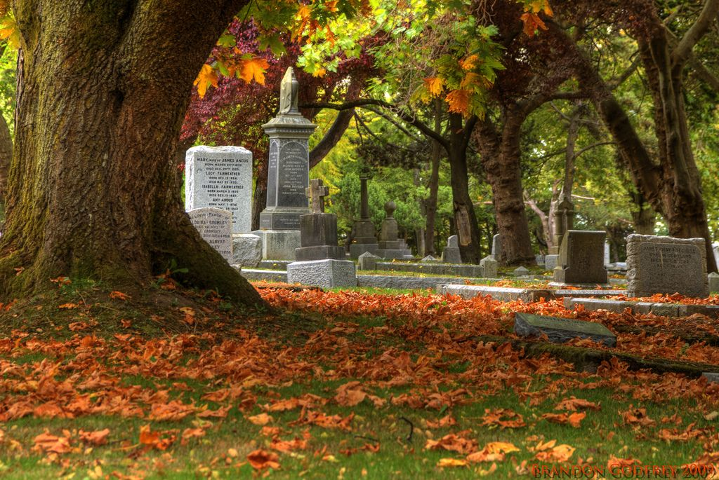 Image result for Images of cemeteries in autumn
