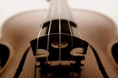 Learn how to play the violin.