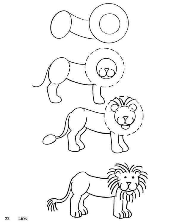 How To Draw Wild Animals Wild Animals Drawing Animal Drawings Animals Wild
