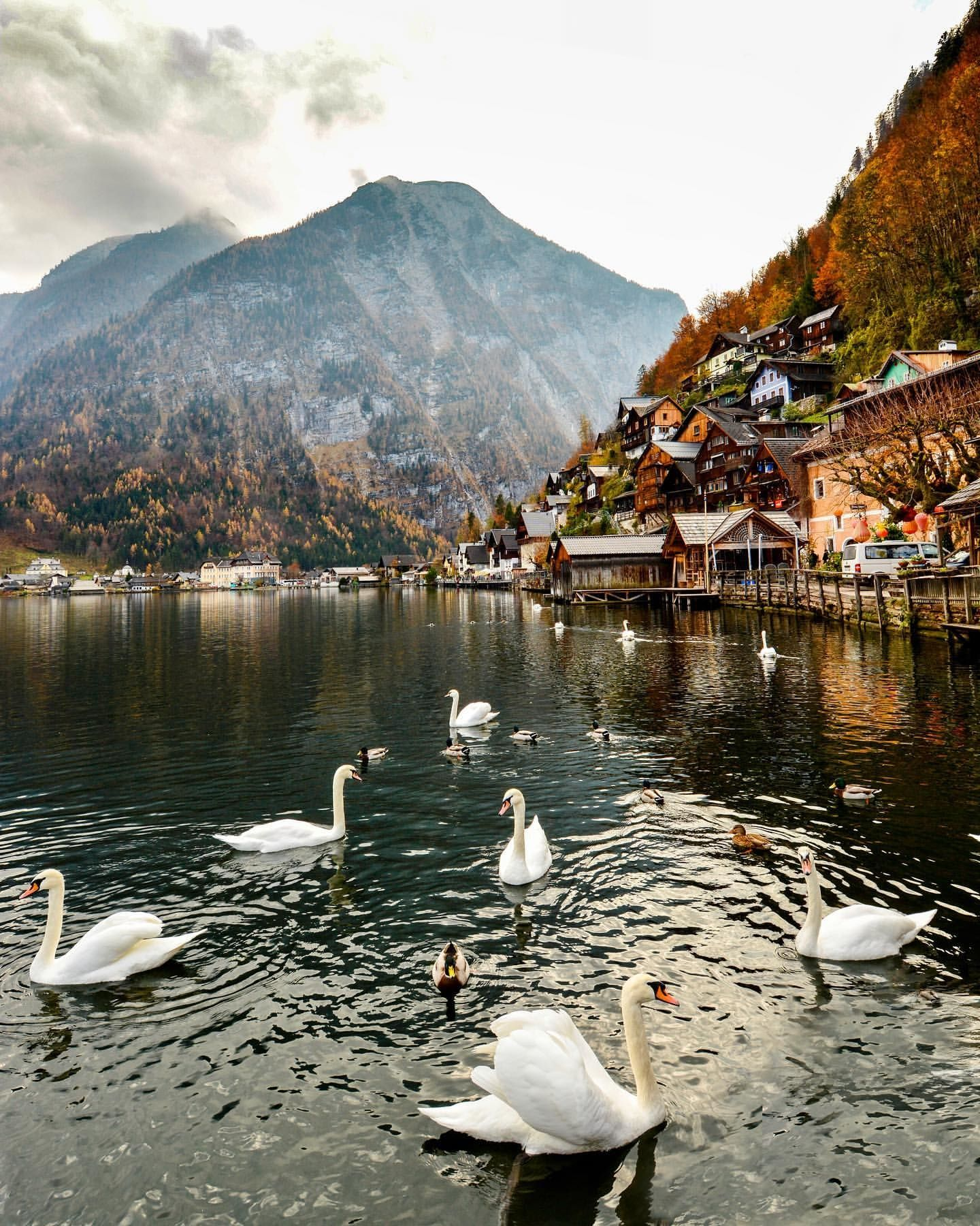 """You don't have to be rich to travel well."" – Eugene Fodor  . . Post by @wanderlust.rachel . . #hallstatt #austrianalps #austriatoday #austrianblogger #austriagram #nikonphotography #europe_pics #europe_ig #europe_photogroup #dnescestujem #globetrotter #tasteintravel #timeoutsociety #mytinyatlas #gltlove #travelcommunity #seetheworld #roamtheplanet #igworldclub #sidewalkerdaily #traveltagged #lifewelltravelled #earthpix #earth_pix #fallphotography #autumnvibes #autumncolours"