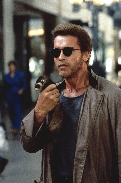 Kindergarten Cop Arnold Schwarzenegger Schwarzenegger Movie Stars