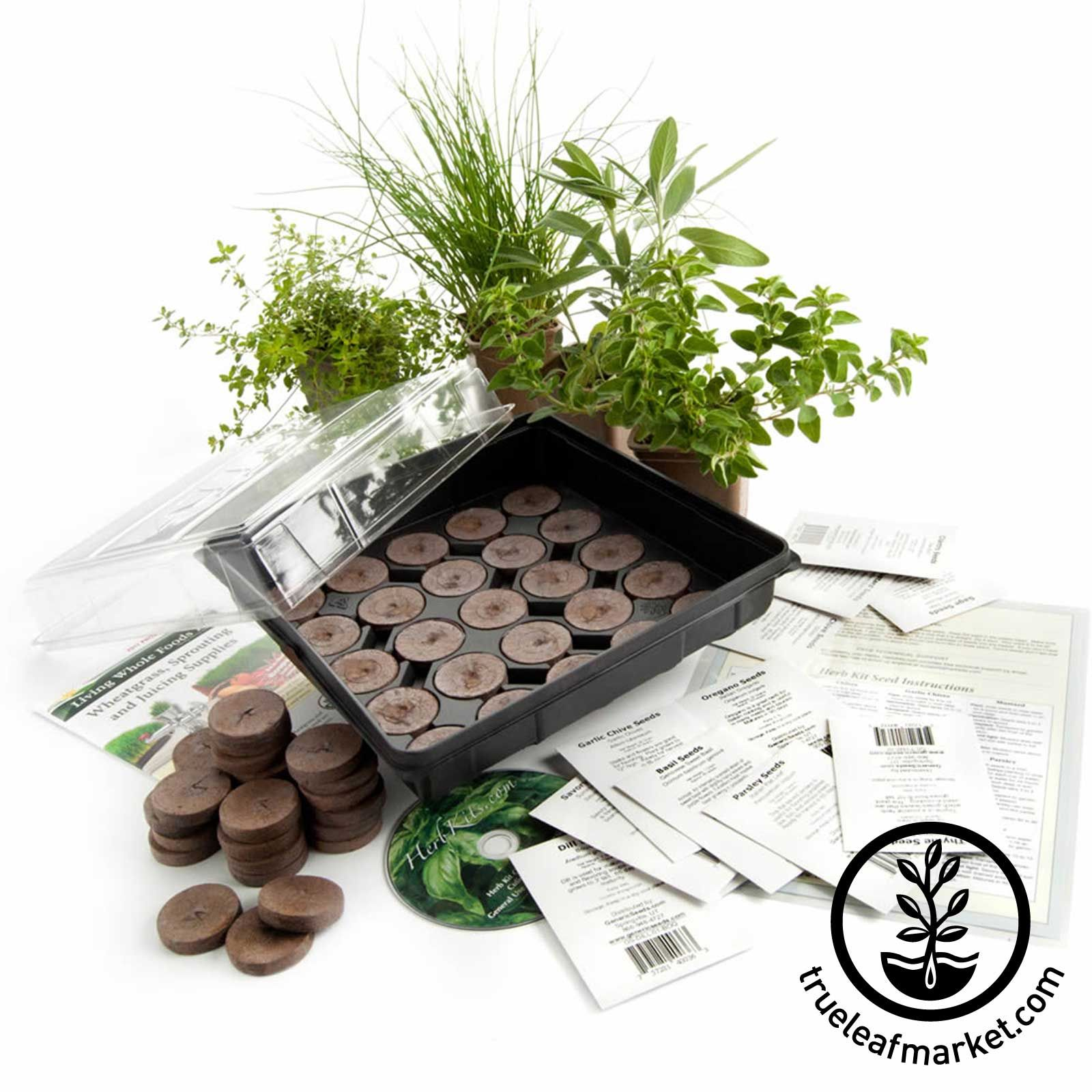 Seed Starter Kit Culinary Herb Herb Garden Kit Culinary Herbs
