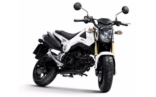 2017-2018 Honda MSX 125 the year – moto 2017-2018-2019