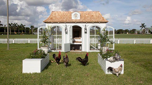 Neiman Marcus offers $100K chicken coop