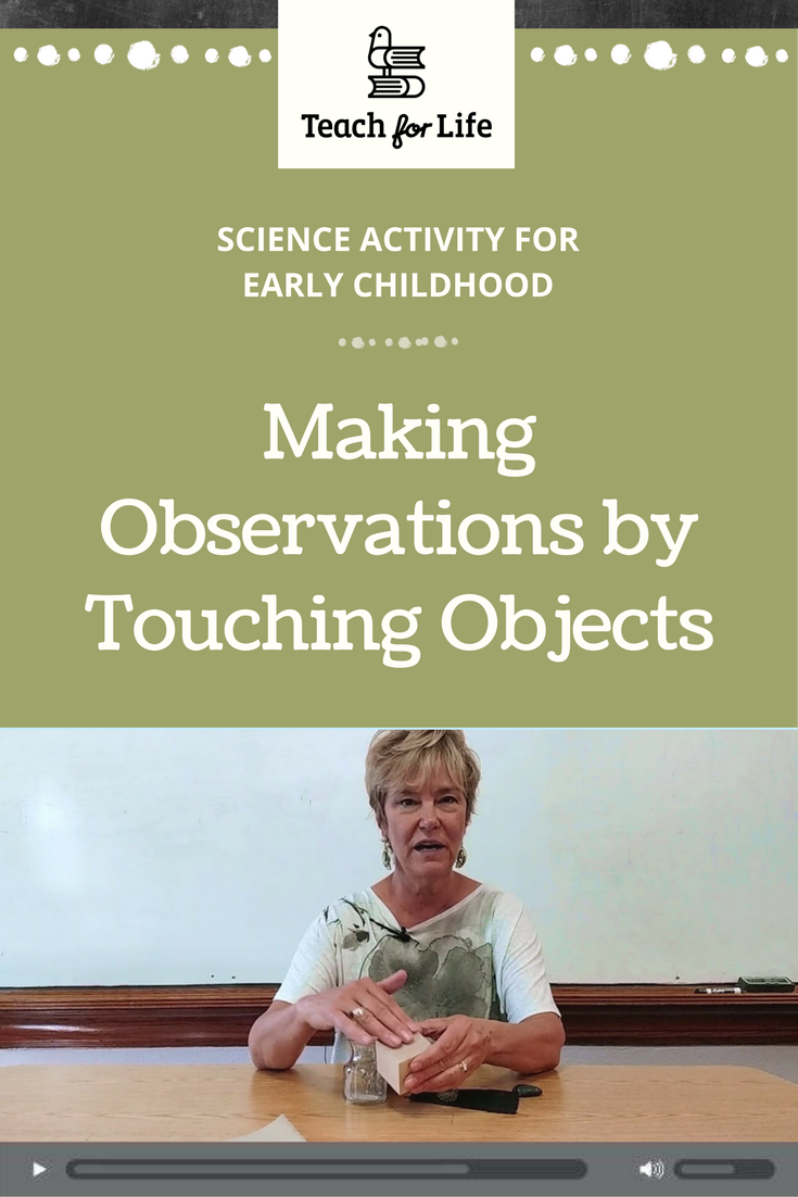 In this activity, students learn how to make observations using their sense of touch. The teacher provides several objects for students to touch and hold, and they sort the objects according to whether they feel rough or smooth.