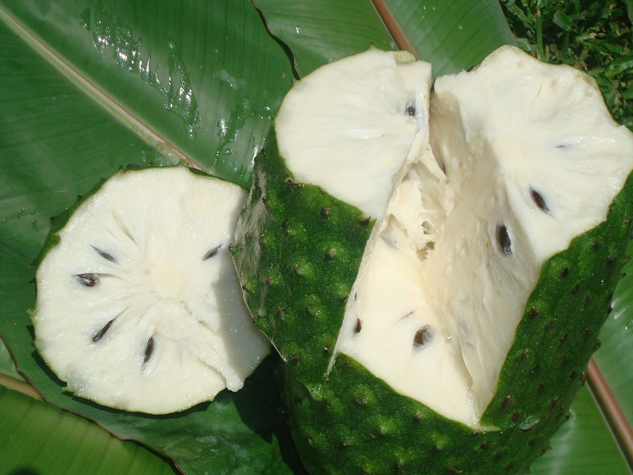 melaninamami: yazzyshakur: zay4ik: guanabana this fruit tastes ...