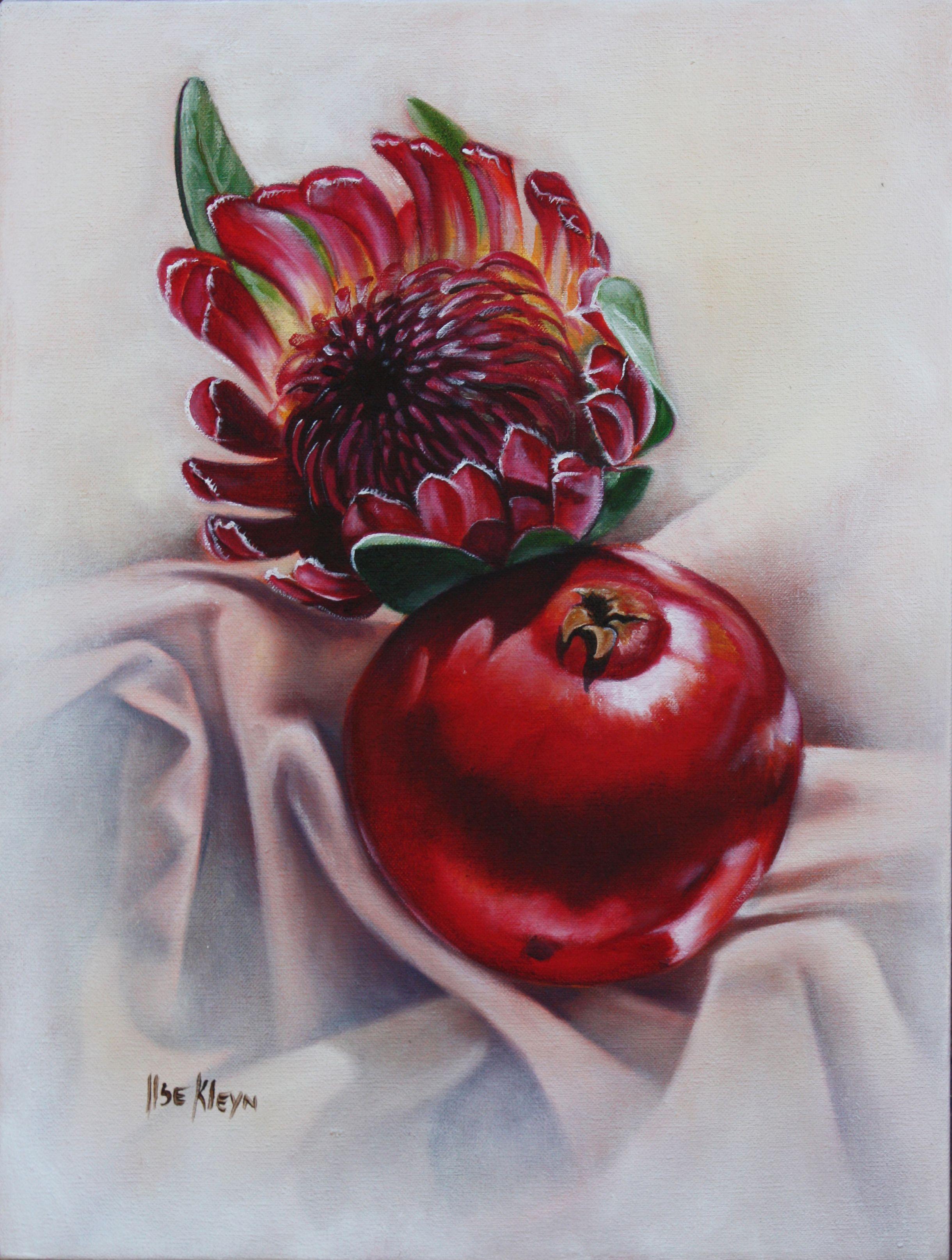 Oil Painting By Ilse Kleyn Www Artofkleyn Co Za Protea Art Floral Art Flower Art
