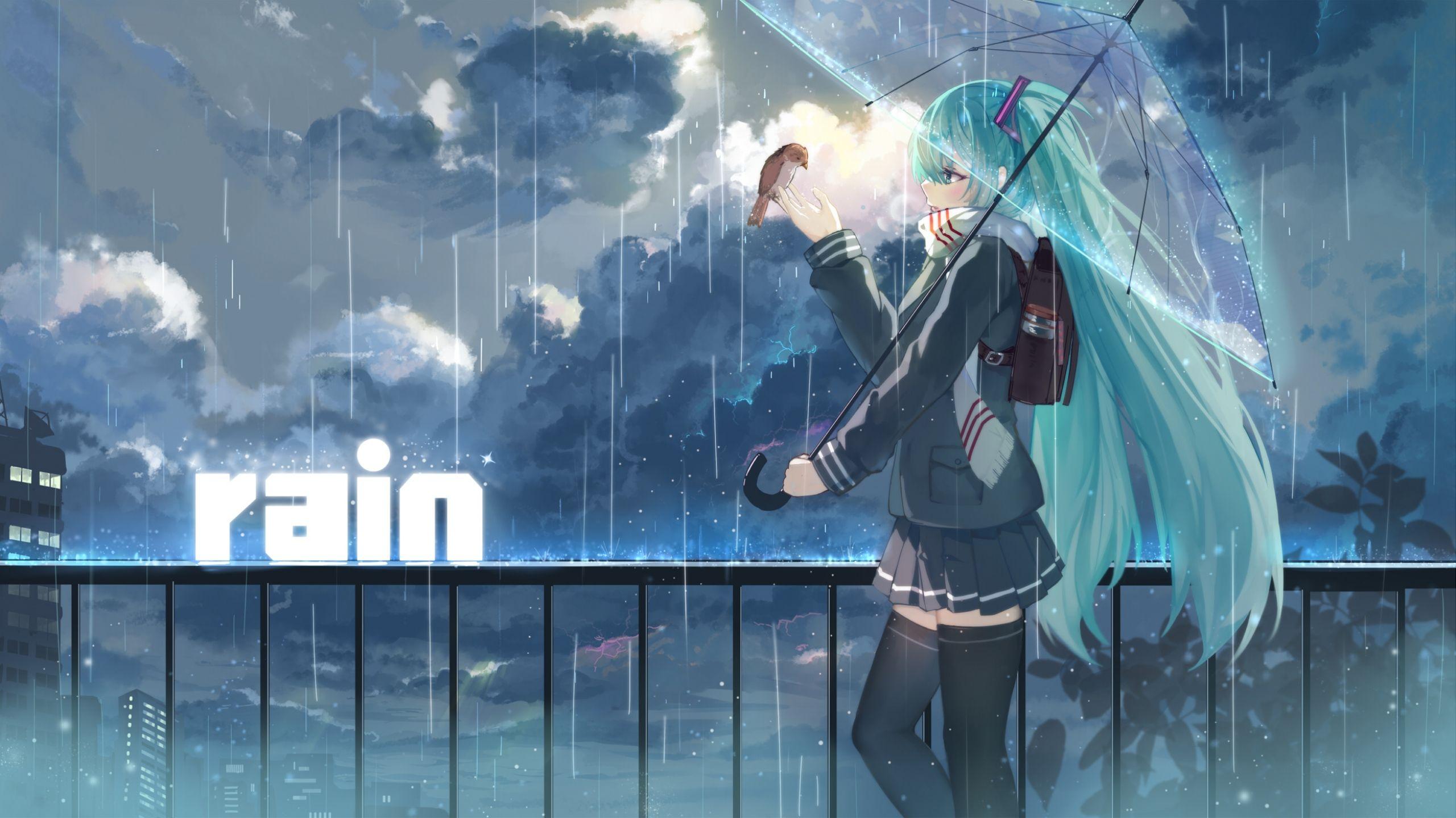 2560x1440 Wallpaper Haraguro You Vocaloid Hatsune Miku Girl Umbrella Rain Hatsune Miku Girl In Rain Hatsune