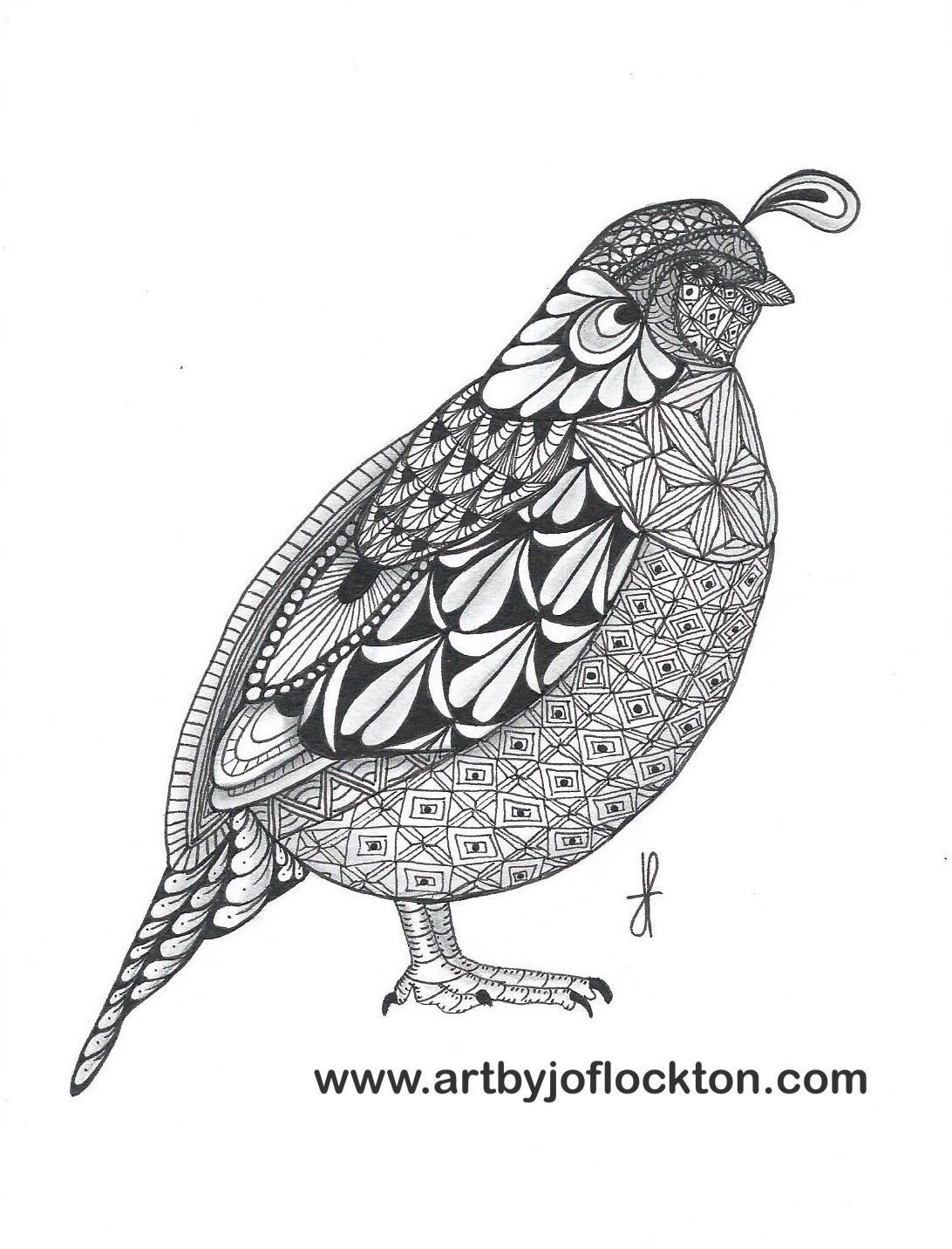 Coloring pages quail - Tangled Quail Ben Kwok Template 19 25