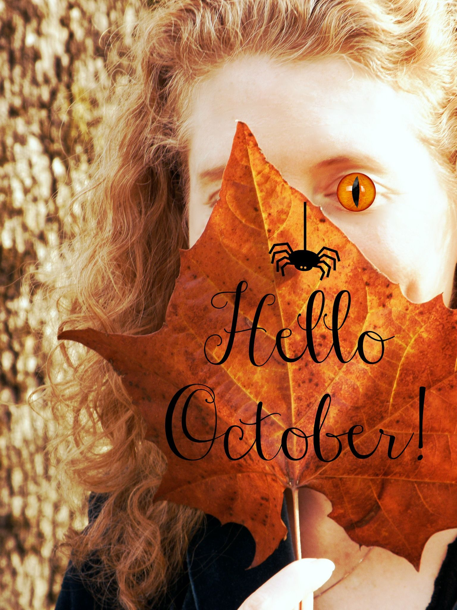 October Hello photography pictures pictures
