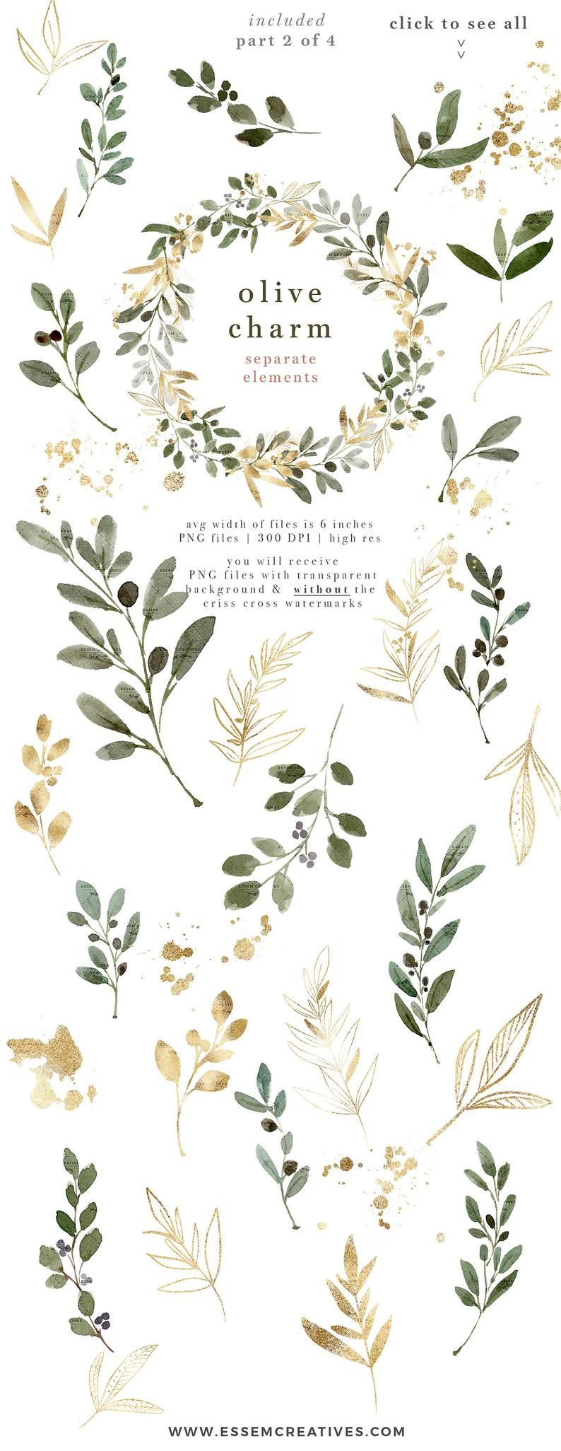 Watercolor Olive Branch Clipart Olive Leaves Clipart Wreath Etsy In 2021 Clip Art Olive Branch Interior Design Rustic