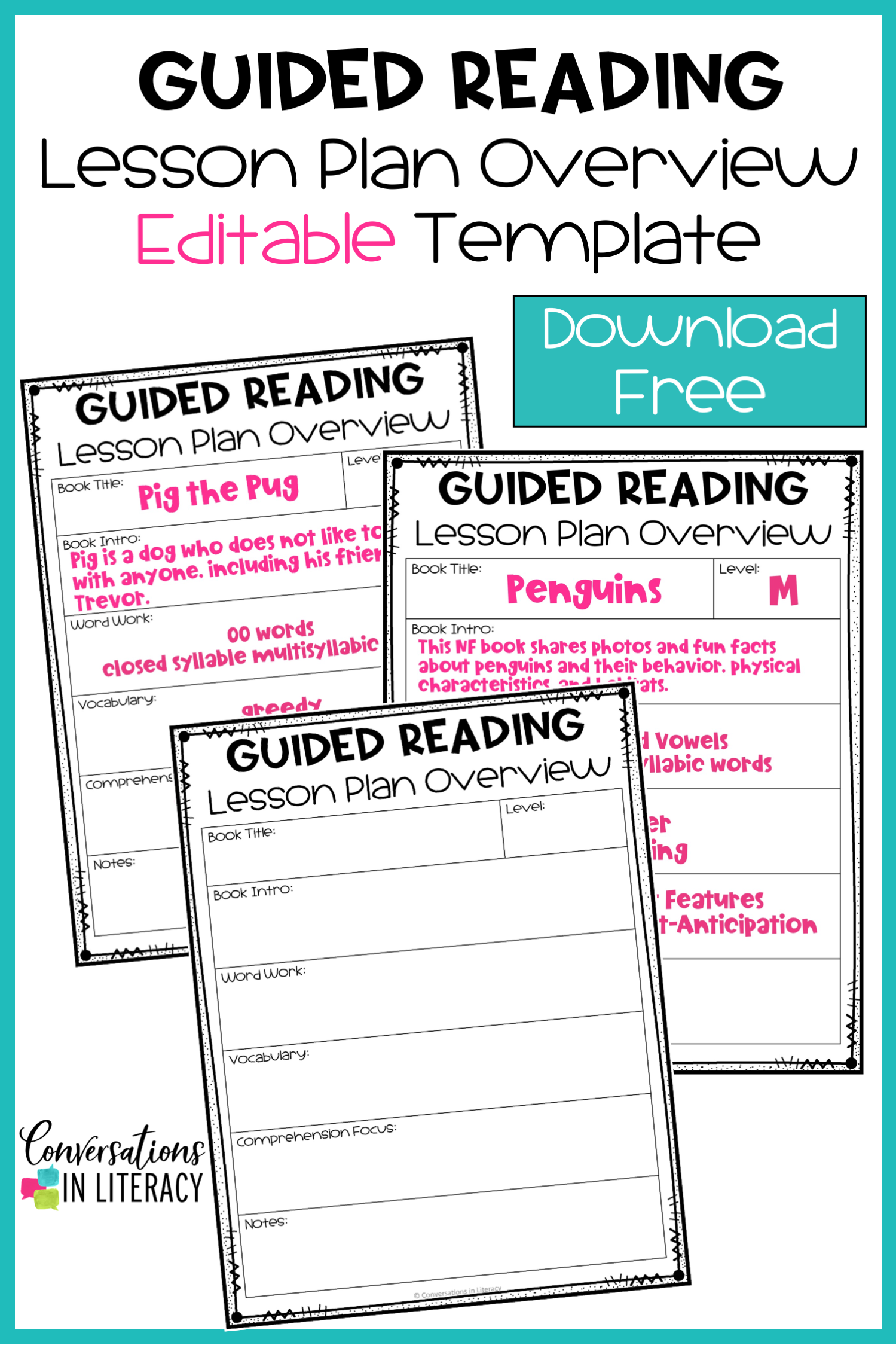 Free Editable Guided Reading Lesson Plan Overview