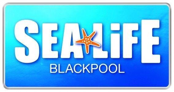 4 X Sealife BLACKPOOL Tickets OVER 50 OFF!🐠SAT DEC 22nd-HALF-TERM