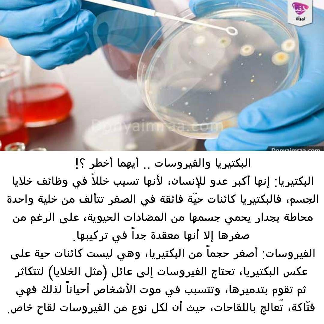 Donya Imraa دنيا امرأة On Instagram البكتيريا والفيروسات أيهما أخطر تشكل البكتيريا والفيروسات خطرا كبيرا يهدد صح ة الإ Instagram Posts Instagram Post